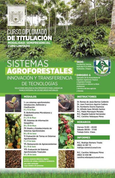 Oferta UNACH Curso Diplomado de Titulación, Sistemas Agroforestales, Innovación y Transferencia de Tecnologías