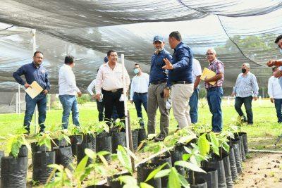 Resaltan relevancia de la formación profesional de los agrónomos en la UNACH